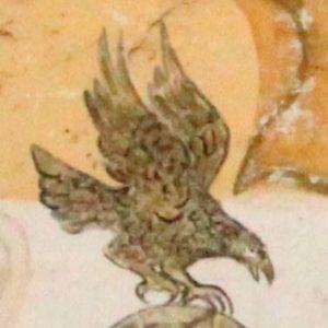 Awako: Vogel-Bild