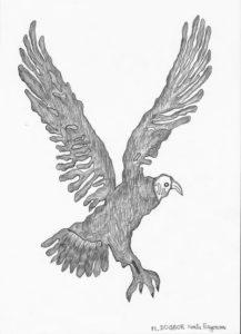 Awako-Zeichnung